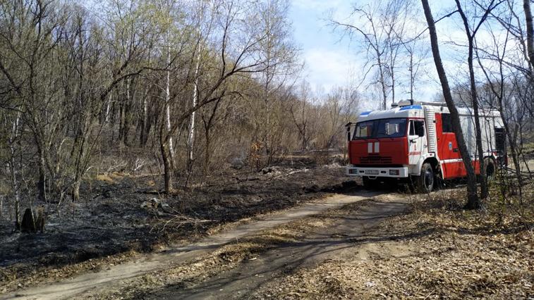 13 палов потушили амурские пожарные за минувшие сутки