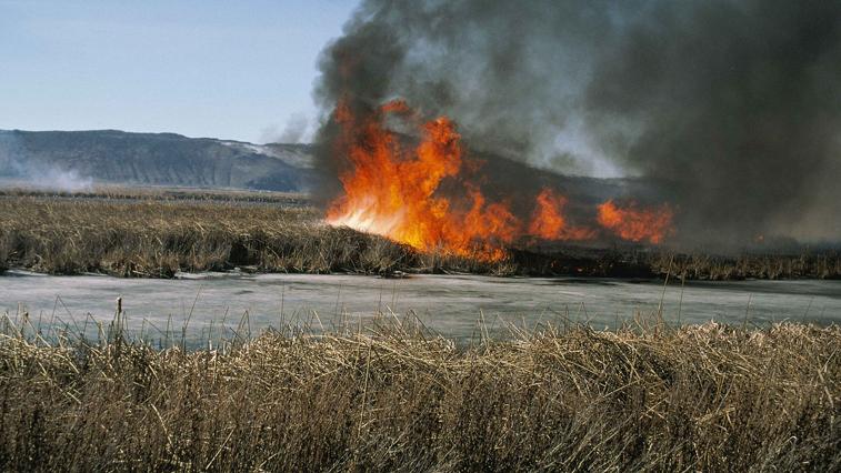 В Завитинском районе пожарные около 5 часов защищали от огня с. Болдыревка
