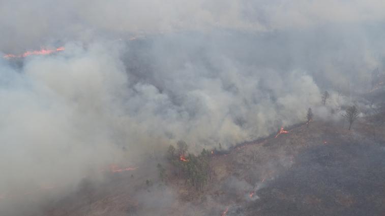 На линии огня: 12 природных пожаров и 28 палов зарегистрировано в Амурской области за сутки