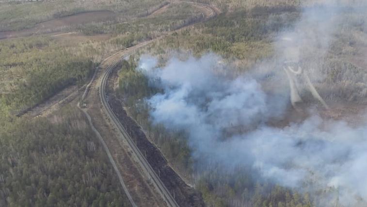 В Сковородинском районе рабочие железной дороги могли стать виновниками лесного пожара
