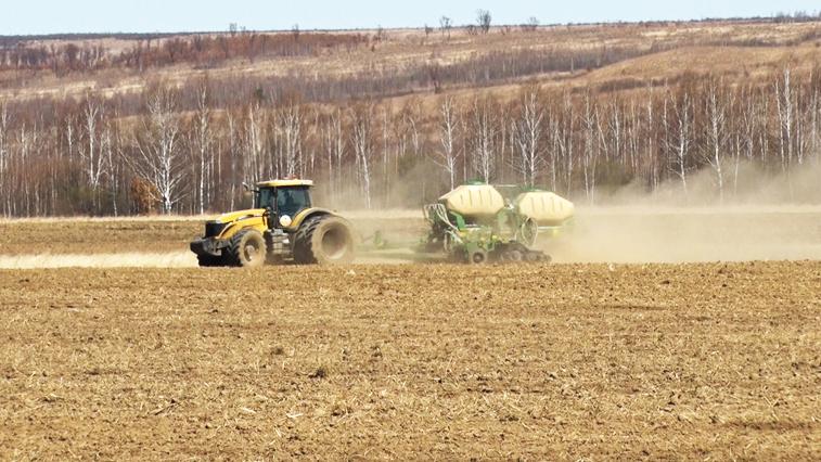 Посевная сои: Как амурские аграрии справляются с непогодой?
