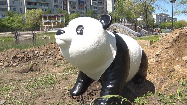 Семейство панд поселилось в парке Дружбы Благовещенска