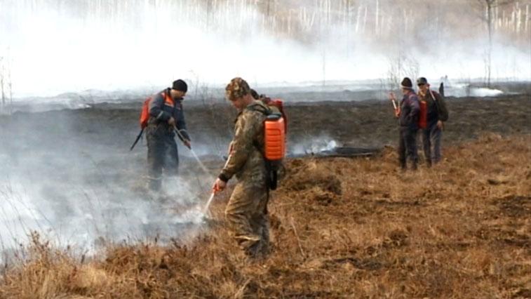 В Приамурье за сутки зарегистрировано 9 природных пожаров