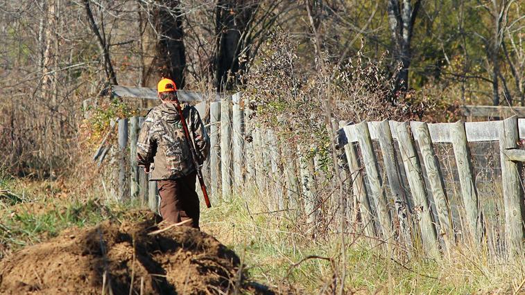 Троих браконьеров с тепловизором задержали в Свободненском районе