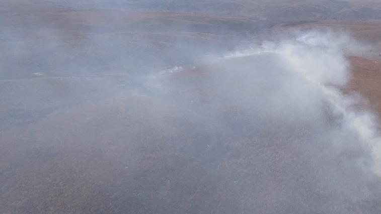 Лишь в лесах Сковородинского района сейчас сложная пожарная обстановка