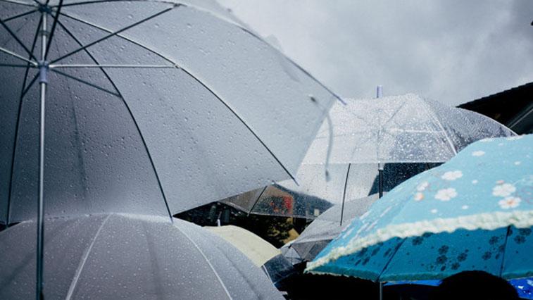 Дожди возвращаются: прогноз погоды в Амурской области на 6 июня