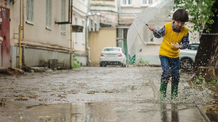 И снова дождь: прогноз погоды в Амурской области на 7 июня