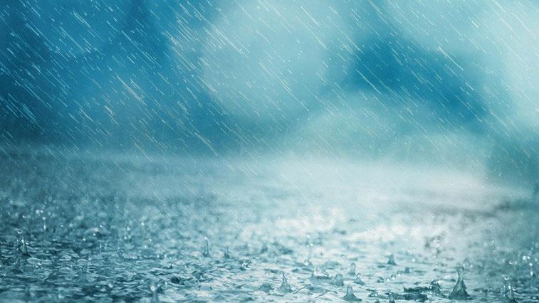 Сильные дожди пройдут по северу региона: прогноз погоды в Амурской области на 9 июня