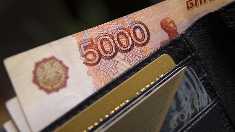 Налогоплательщики, которым отказали в субсидии из-за ошибок, могут подать повторную заявку