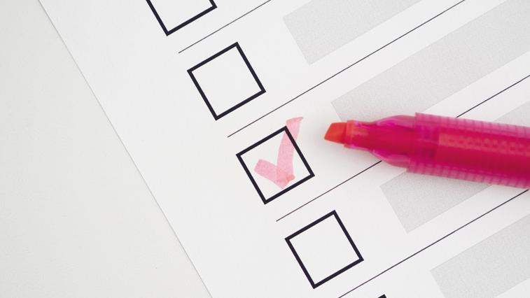 Досрочное голосование по поправкам в Конституцию начинается сегодня в отдалённых районах