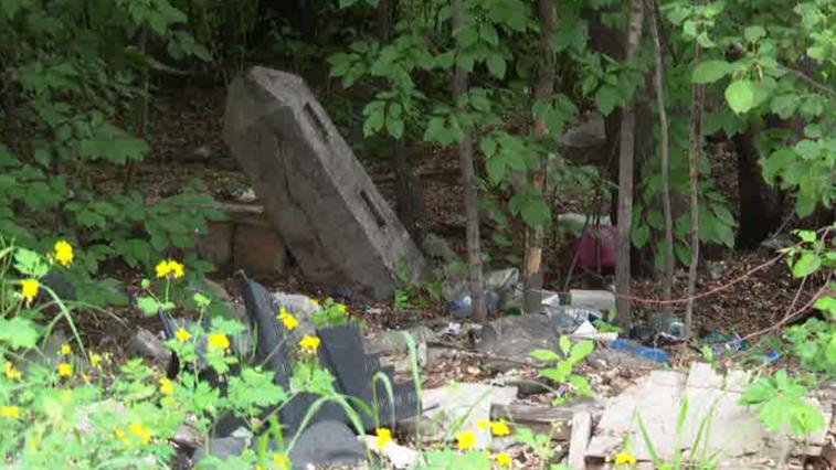 Мемориальный комплекс создадут на Вознесенском кладбище в Благовещенске