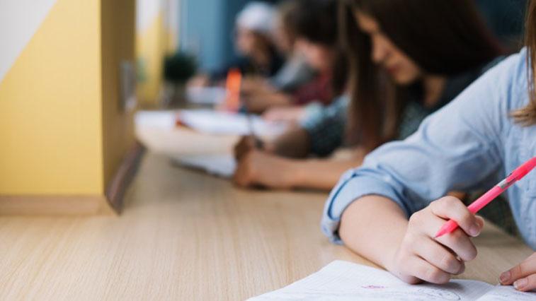 Более 800 амурских школьников удостоены стипендии губернатора
