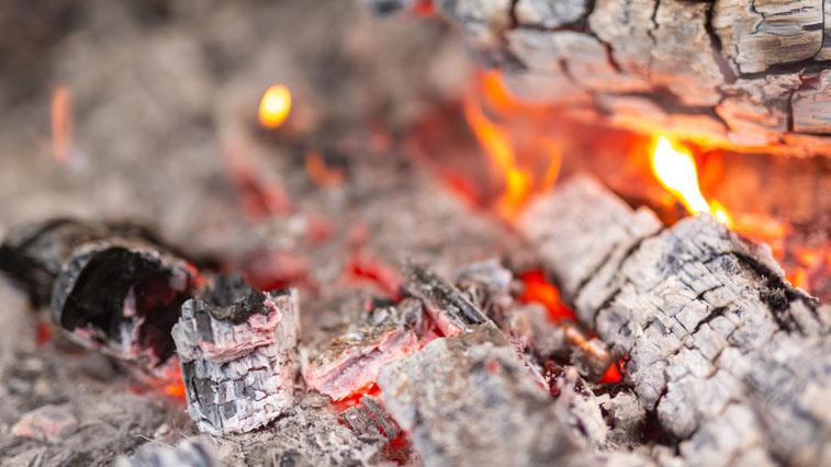 В Приамурье не будут тушить 9 пожаров из-за удалённости и сложного рельефа