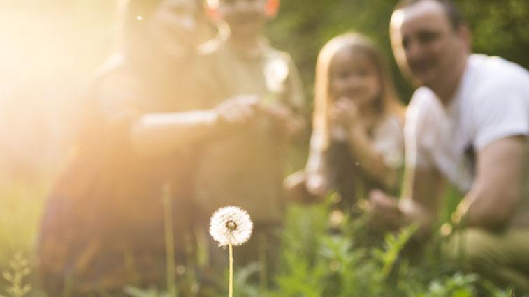 День любви, семьи и верности в этом году для благовещенцев будет виртуальным