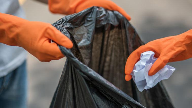Экологи предлагают российским университетам перейти на сортировку твердых бытовых отходов