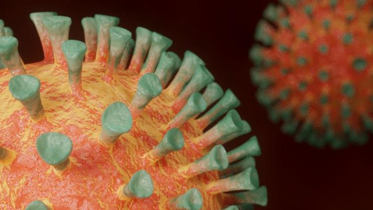 Снова подъем: 44 случая заболевания коронавирусом зафиксировано сегодня в Амурской области