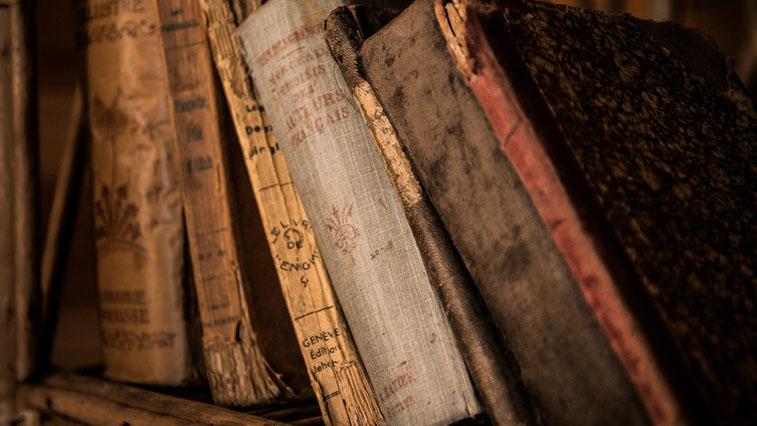 Амурчанам предлагают присоединиться к «Книжному спринту»