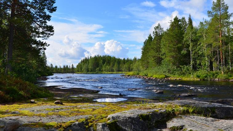 Приамурье расскажет всей России как планирует развивать экотуризм