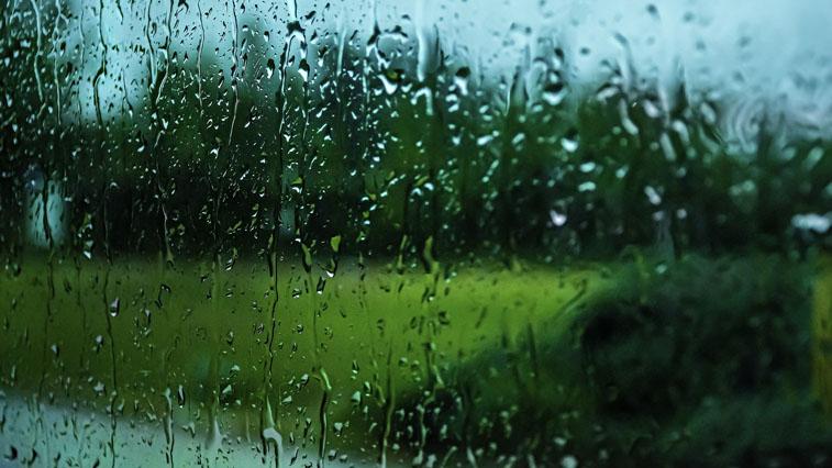Дожди, грозы и ветра: В Амурской области ожидается ухудшение погоды