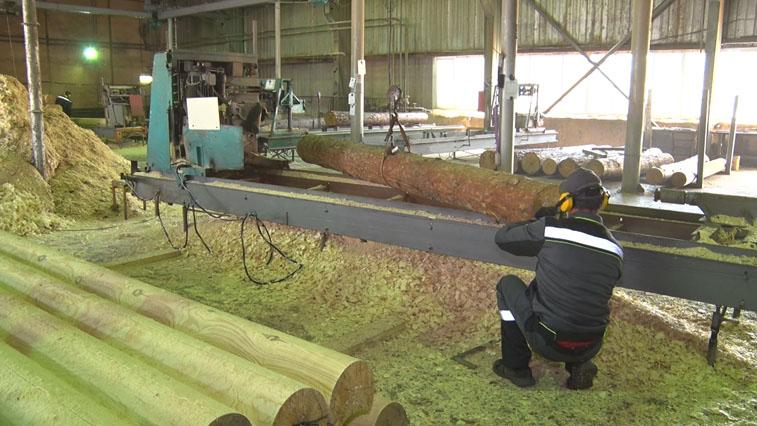 В Приамурье введен в эксплуатацию деревообрабатывающий завод «Восточный»