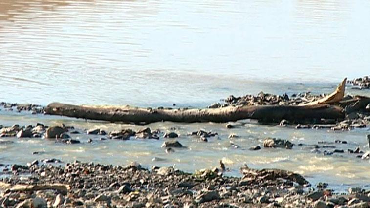 WWF-России: В Амурской области самые загрязненные реки