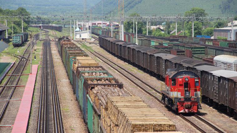 В регионе выявили контрабанду лесоматериалов на сумму 22,1 млн рублей