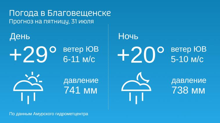 В пятницу в Амурской области дожди, местами сильные