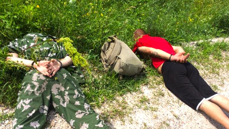В Амурской области вахтовики попались с марихуаной