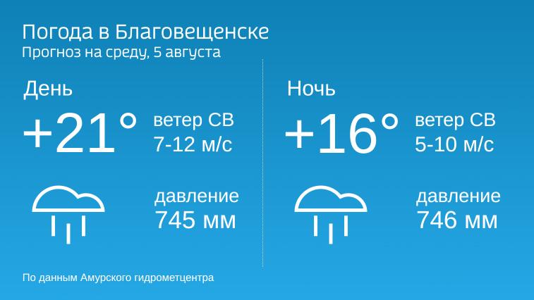 В среду в Амурской области будет прохладно и дождливо