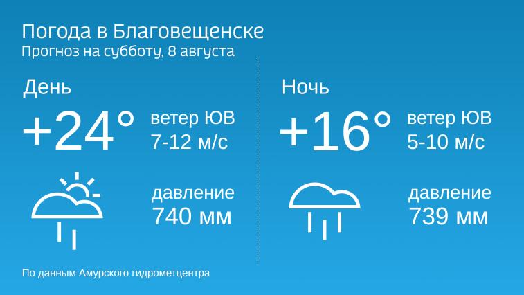 Дожди и грозы: прогноз погоды в Амурской области на 8 августа
