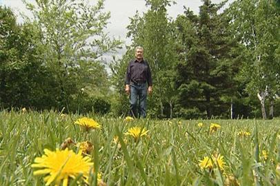 Многих амурчан захлестнула волна сезонной аллергии