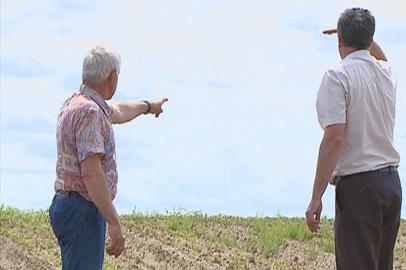 Амурские овощеводы прогнозируют дефицит местного картофеля