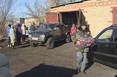 Излишки льготного картофеля продадут всем нуждающимся амурчанам