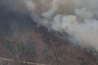Режим ЧС в связи с лесными пожарами ввели в 3-х районах Приамурья