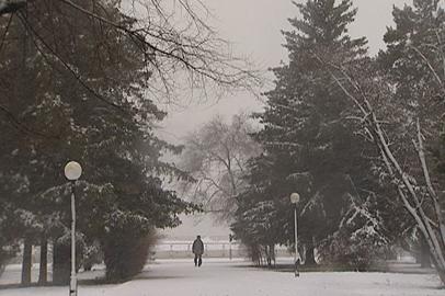 Снежная погода в Приамурье: задержки авиарейсов и энергоаварии