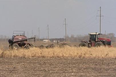 Амурские земледельцы приступили к севу ячменя