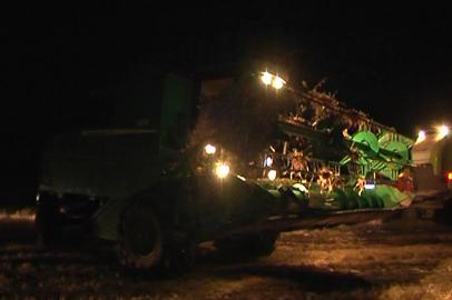 Амурские аграрии вынуждены убирать сою по ночам