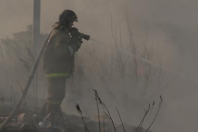 Приамурье отмечено за хорошую профилактику лесных пожаров