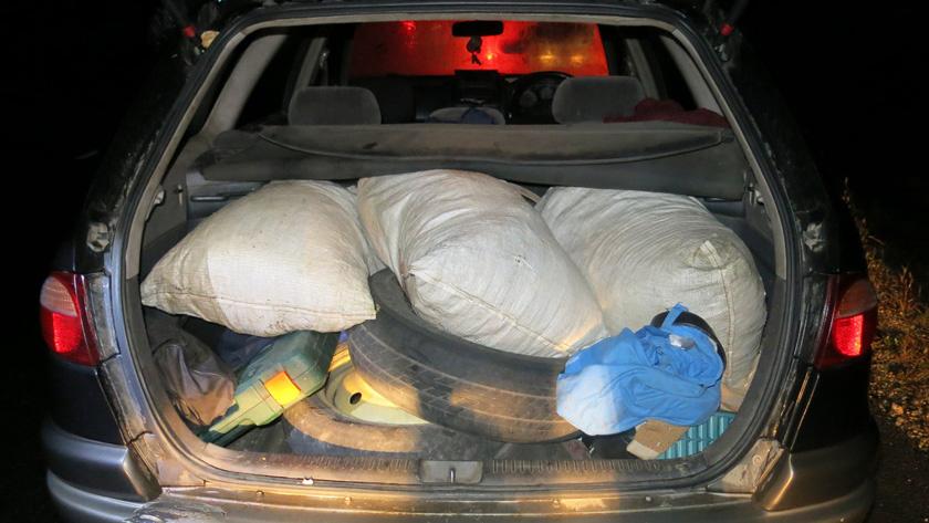В Циолковском задержали перевозившего около 20 килограммов наркотиков мужчину